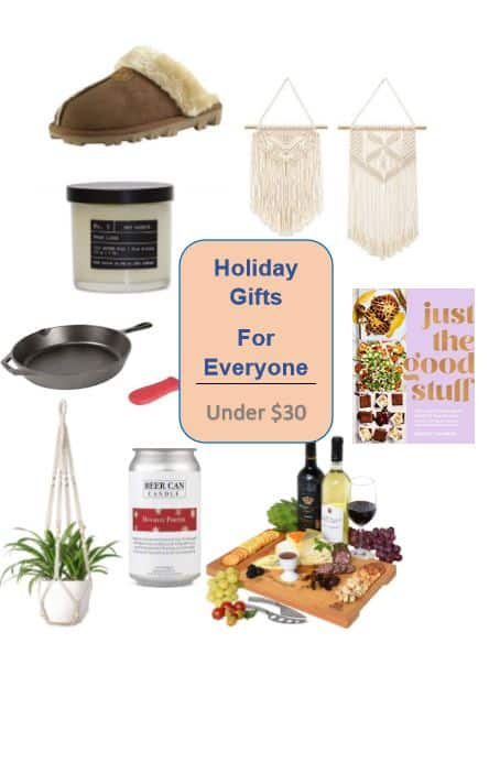 A Holiday Gift Guide with awesome, unique, and fun gifts. You can order them all online from the comfort of your own home, and they all cost less than $30. #holidaygiftguide #giftguide #budgetshopping